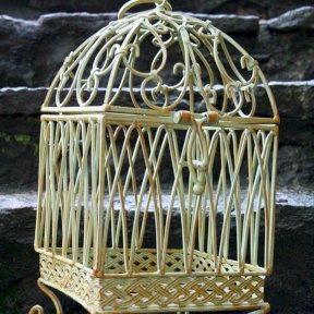 Green metal birdcage