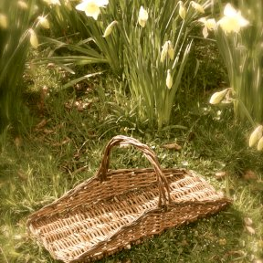 flower-picking basket