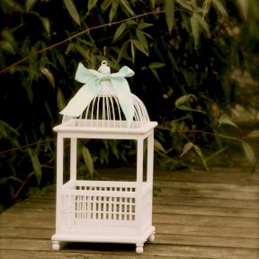 White wooden birdcage